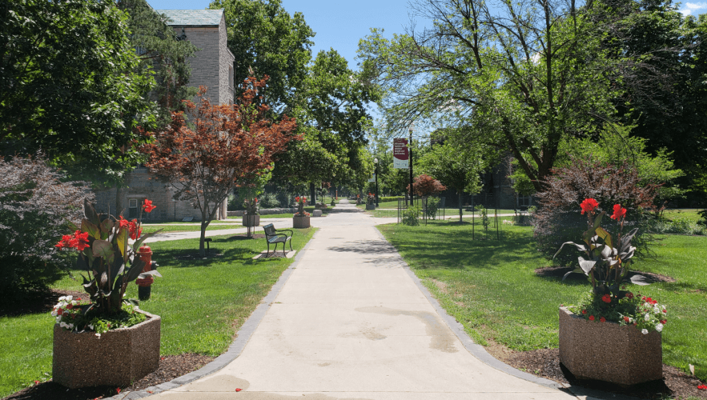McMaster campus in the summer